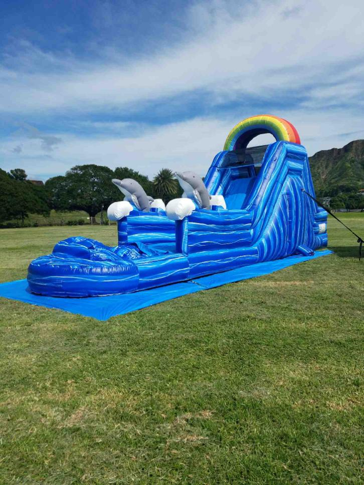 Dolphin Water Slide - A & B Party Rentals Plus Supplies